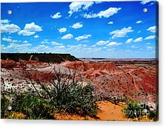 Acrylic Print featuring the photograph Painted Desert by Utopia Concepts