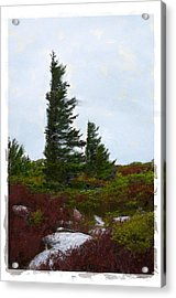 Painted Flagstaff Acrylic Print