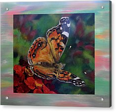 Painted Lady By Karen Peterson Acrylic Print by Karen  Peterson