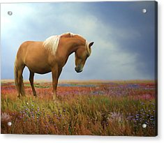 Painted Pastures Acrylic Print by Sharon Lisa Clarke