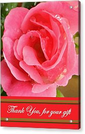 Painted Pink Rose Acrylic Print