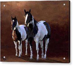 Painted Ponies Acrylic Print by Roger D Hale