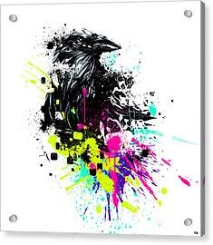 Painted Raven Acrylic Print by Jeremy Scott