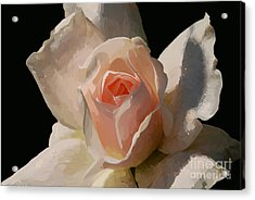 Painted Rose Acrylic Print by Lois Bryan
