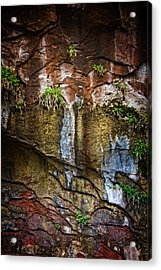 Painted Walls Of Oak Creek No. 1 Acrylic Print by Dave Garner