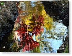 Painted Water Acrylic Print by Jennifer Apffel
