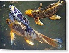 Painterly Fishpond Acrylic Print by Adria Trail