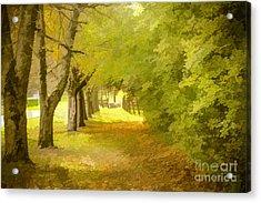 Painterly Pathway Acrylic Print by Jim Lepard