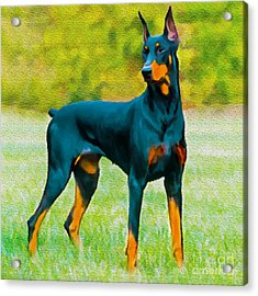 Painting Doberman Pincher Acrylic Print by Bob and Nadine Johnston