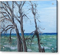 Painting - Waiting For Spring - Lake Ontario Acrylic Print by Judy Via-Wolff