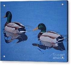 Pair Of Mallards Acrylic Print