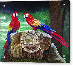 Pair Of Parrots By Barbara Heinrichs Acrylic Print by Sheldon Kralstein