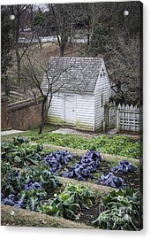 Palace Kitchen Winter Garden Acrylic Print