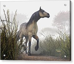 Pale Horse In The Mist Acrylic Print by Daniel Eskridge