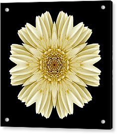 Acrylic Print featuring the photograph Pale Yellow Gerbera Daisy IIi Flower Mandala by David J Bookbinder