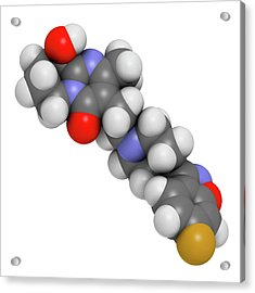 Paliperidone Drug Molecule Acrylic Print by Molekuul