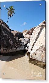 Palm At The Baths Virgin Islands Acrylic Print