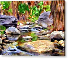 Palm Canyon Trail Acrylic Print by Michael Pickett