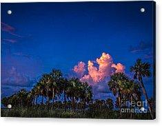 Palm Clouds Acrylic Print
