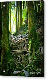 Acrylic Print featuring the photograph Palm Forest by Ellen Cotton