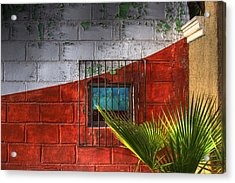 Acrylic Print featuring the photograph Palm Frond View by Kandy Hurley