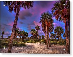 Palm Grove Acrylic Print by Marvin Spates