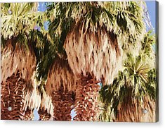 Acrylic Print featuring the painting Palm by Muhie Kanawati