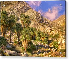 Palm Oasis In Late Afternoon Acrylic Print