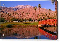 Palm Springs Acrylic Print by Chris Tarpening