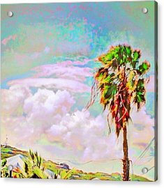 Palm Tree Against Pastel Sky - Square Acrylic Print