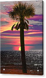 Palm Tree At Sunset Acrylic Print