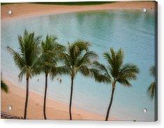 Palm Tree Lagoon Acrylic Print
