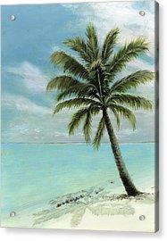 Palm Tree Study Acrylic Print