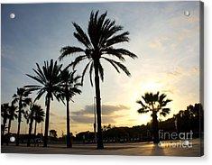 Palm Tree Sunset Acrylic Print by Eszter Kovacs