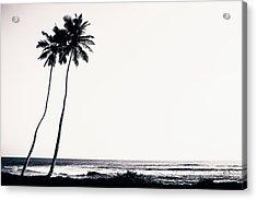 Palm Trees And Beach Silhouette Acrylic Print by Chrispecoraro