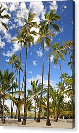 Acrylic Print featuring the photograph Palm Trees At Pu'uhonua O Honaunau Nhp by Scott Rackers