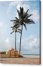 Palm Trees At Sunrise On Hollywood Beach Acrylic Print by Shawn Lyte