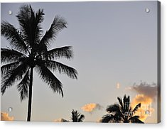 Palm Trees At Sunrise Acrylic Print