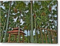 Palm Trees Acrylic Print by Mario Legaspi
