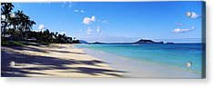 Palm Trees On The Beach, Lanikai Beach Acrylic Print