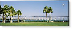 Palm Trees On The Coast With Bridge Acrylic Print by Panoramic Images