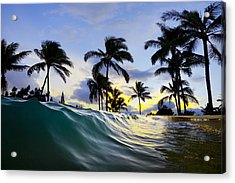 Palm Wave Acrylic Print by Sean Davey