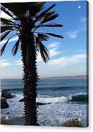 Acrylic Print featuring the photograph Palm Waves by Susan Garren