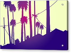 Palms 2 Acrylic Print by Giuseppe Cristiano
