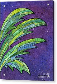 Palms Against The Night Sky Acrylic Print by Diane Thornton