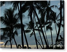 Acrylic Print featuring the photograph Palms At Dusk by Suzanne Luft