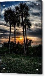 Palms At Sunet Acrylic Print