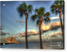 Palms At The Pier Acrylic Print by Timothy Lowry