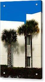 Palms Acrylic Print by Bruce Lennon