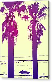 Palms Acrylic Print by Giuseppe Cristiano